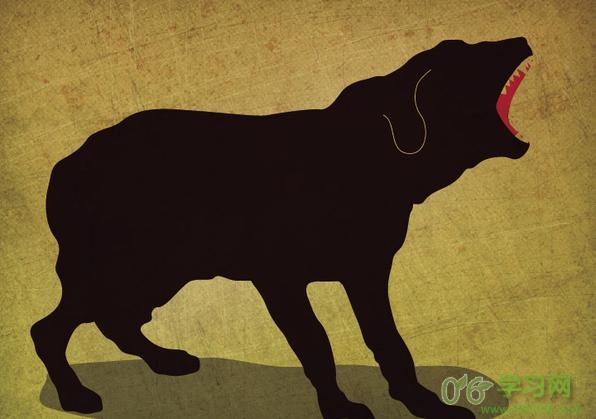 狂犬病患为什么会恐水?